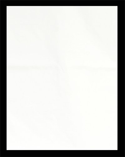 10x12 ft White Studio Portrait Photography Muslin Backdrop-0